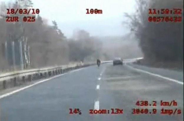 438,2 km/h po polskiej drodze? /INTERIA.PL