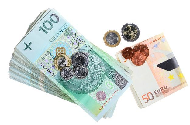 46 proc. Polaków za przyjęciem euro; 42 proc. przeciw /©123RF/PICSEL