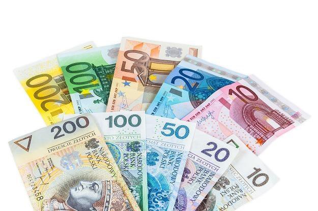 49 proc. badanych przez TNS Polska uważa, że Polska powinna przyjąć euro /©123RF/PICSEL
