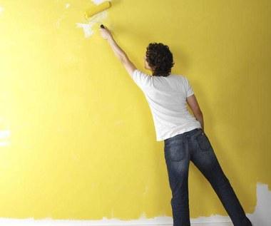 5 częstych błędów w malowaniu – i jak ich uniknąć