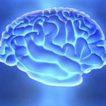 5 czynności, które poprawiają funkcjonowanie twojego mózgu