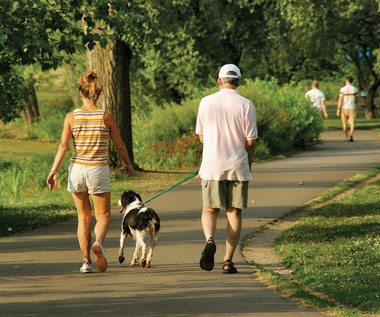 5 powodów dla których musisz codziennie spacerować