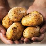 5 powodów, dla których powinniśmy jeść ziemniaki