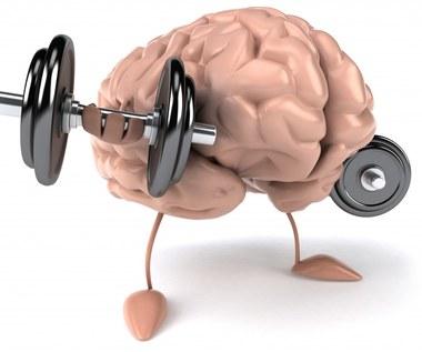 5 powodów, dla których twój mózg lubi ćwiczenia