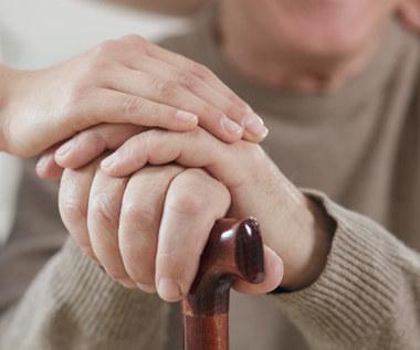 5 ziół i przypraw pomocnych w chorobie Parkinsona