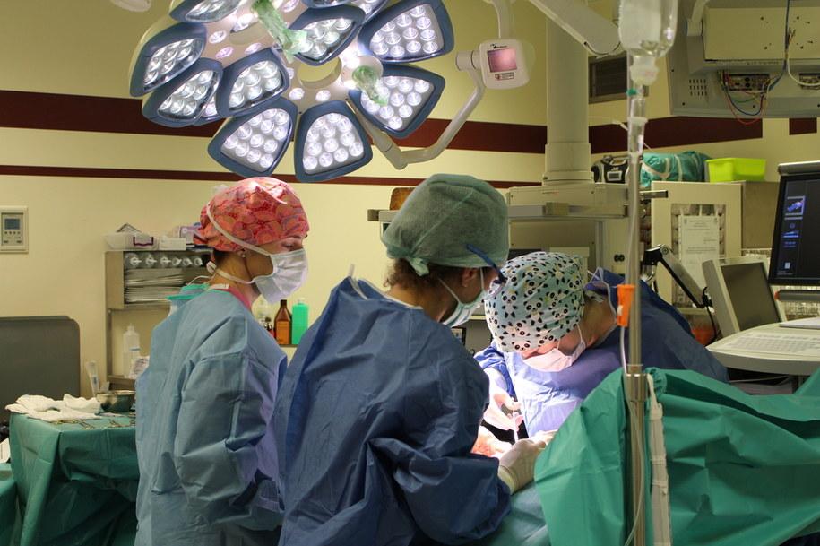 50 magnesów neodymowych wyciągnęli z brzucha dziecka krakowscy lekarze. /