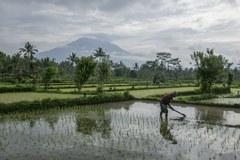 50 tys. osób ewakuowanych z obawy przed erupcją wulkanu na Bali