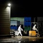 50 tys. ton wołowiny sprzedanej w Europie mogło zawierać koninę
