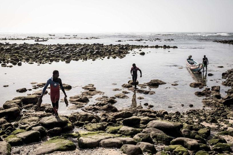500 senegalskich rybaków zaraziło się tajemniczą chorobą skóry /AFP