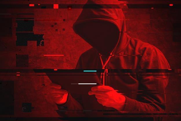 52 proc. litewskich portali jest zagrożonych atakami... /©123RF/PICSEL