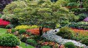 6 najpiękniejszych ogrodów świata