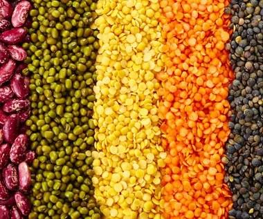 6 produktów bogatych w białko w diecie wegetariańskiej
