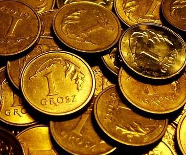 6 rewelacyjnych sposobów na wykorzystanie grosza
