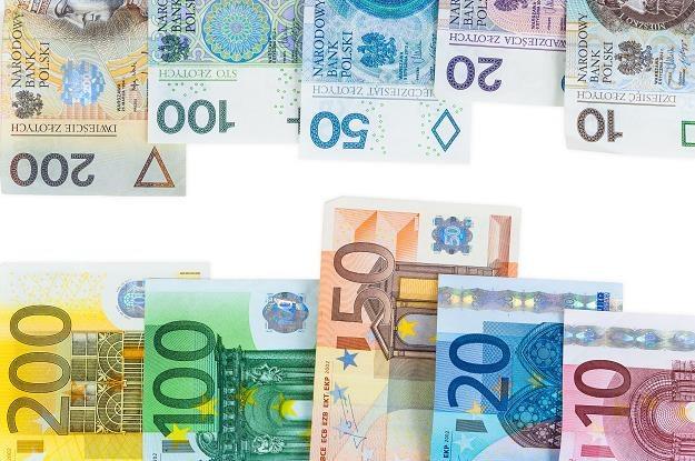 68 proc. respondentów przeciwko wprowadzeniu w Polsce euro /©123RF/PICSEL