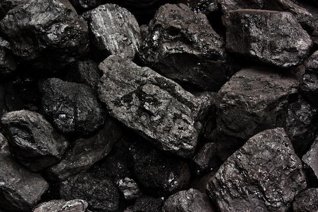 680 pracowników sosnowieckiej kopalni Kazimierz-Juliusz odebrało nowe umowy o pracę /©123RF/PICSEL