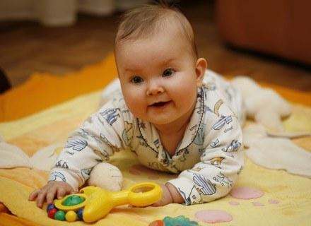 7-8 miesięcy to przeciętny wiek, w którym dzieci zaczynają raczkować