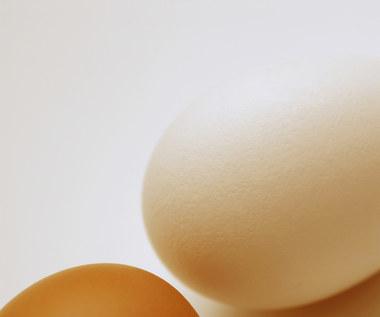 7 ciekawych i niezwykłych sposobów na wykorzystanie jajek