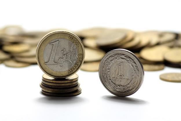 70 proc. Polaków przeciwnych przyjęciu euro, najwięcej w historii badania /© Panthermedia