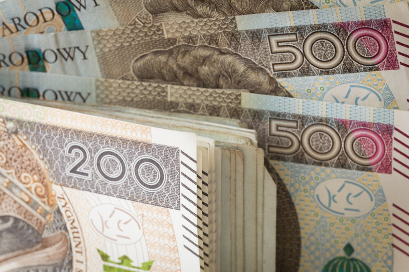 74 percent Poles will withdraw money from banks in case of applying a negative interest rate / 123RF / PICSEL