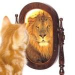 8 błędów, których nie popełniają osoby pewne siebie