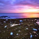 8 mln ton plastiku co roku ląduje w oceanach