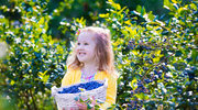 8 produktów, które są dobre dla inteligencji twojego dziecka