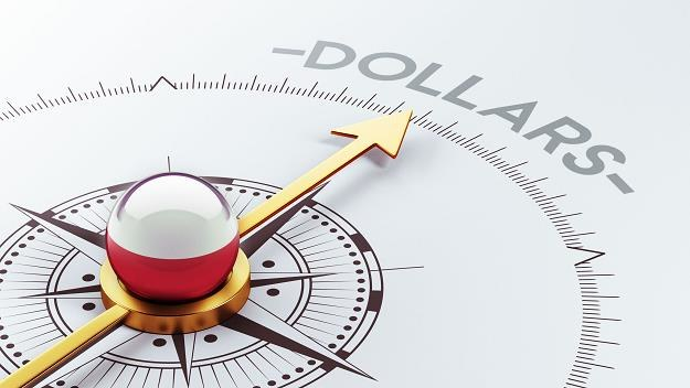 800 amerykańskich przedsiębiorstw zainwestowało w Polsce 91 mld zł /©123RF/PICSEL