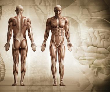 9 faktów na temat ludzkiego ciała, o których nie miałeś pojęcia