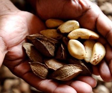 9 oznak niedoboru selenu w organizmie