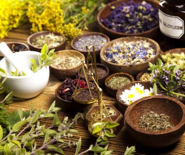 9 ziół i suplementów korzystnie wpływających na nasze zdrowie
