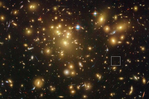 """Abell 1689 w """"obiektywie"""" teleskopu Hubble'a. Kwadratem zaznaczono ledwo widoczną A1689-zD1. /materiały prasowe"""