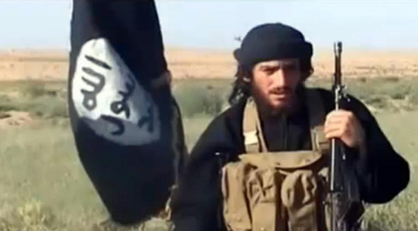 Abu Mohammed al-Adnani /AFP