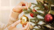 Aby choinka nie gubiła igieł. Przedłużamy żywot świątecznego drzewka