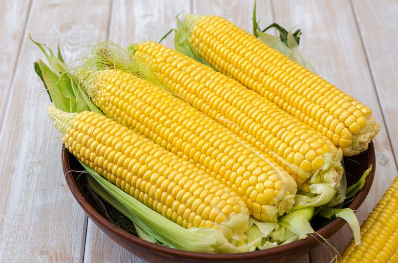 Aby kukurydza była miękka, warto wybrać świeże kolby /123RF/PICSEL
