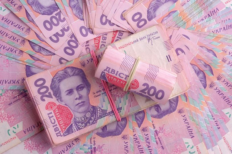 Aby związać koniec z końcem, Ukraina musi w przyszłym roku zaciągnąć potężny dług /123RF/PICSEL