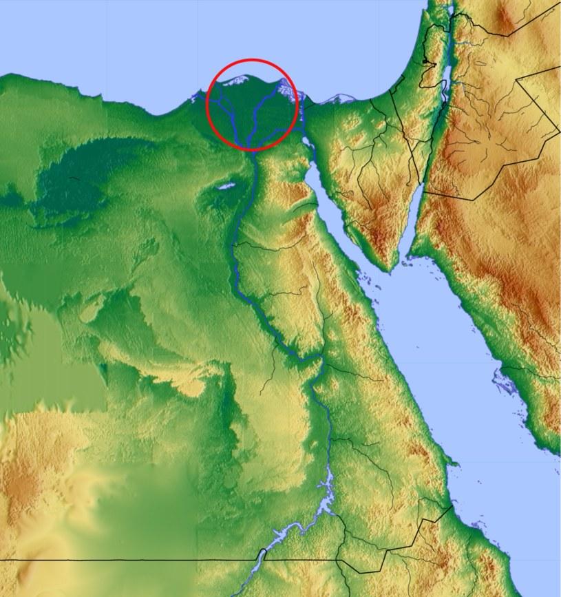 Ad-Dakahlijja znajduje się w rejonie Delty Nilu /wikipedia.pl /domena publiczna