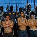 Administracja Obamy wpuściła do USA członków gangu Mara Salvatrucha