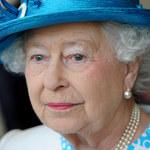 Afera na Wyspach. Ukochany łabędź królowej Elżbiety II nie żyje!