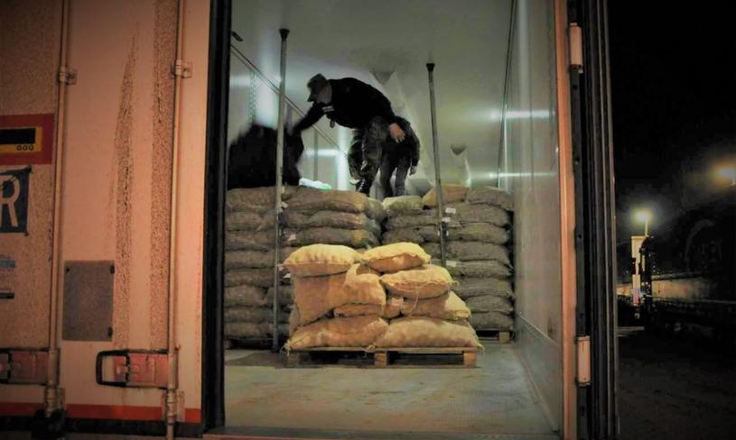 Afgańczyk ukrył się w ziemniakach, Bieszczadzki Oddział Straży Granicznej /