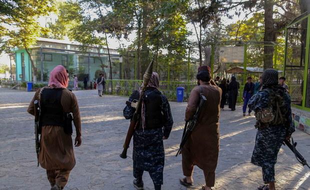 Afganistan. Pierwsze zamachy po przejęciu władzy przez talibów