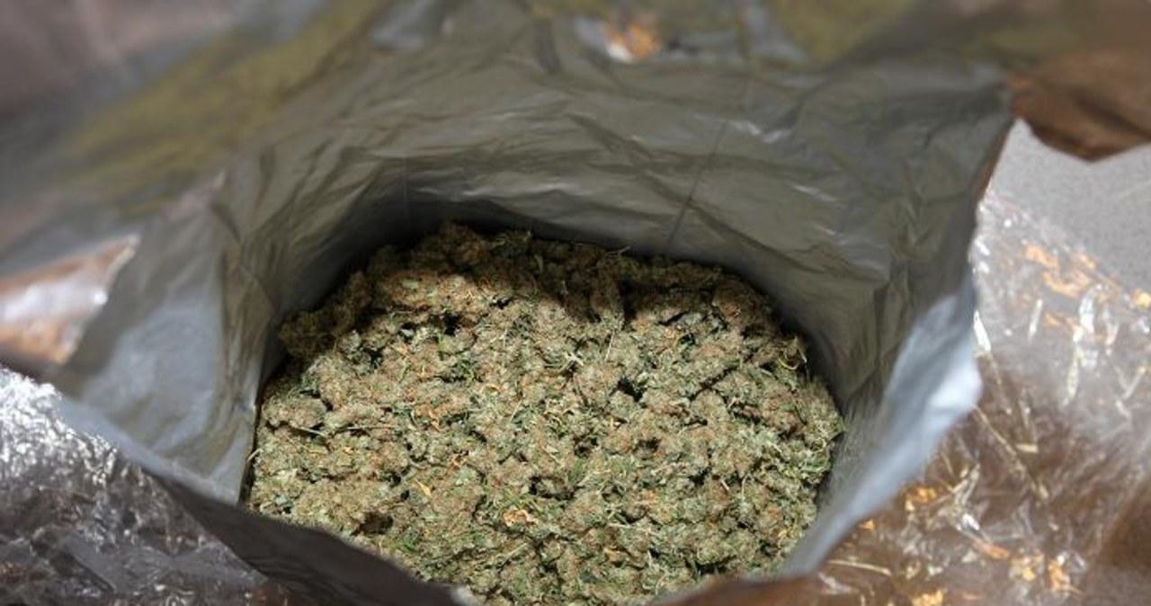 Agenci CBA rozbili narkotykowy gang