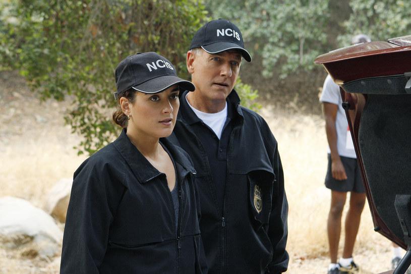 """""""Agenci NCIS"""" /TVN"""