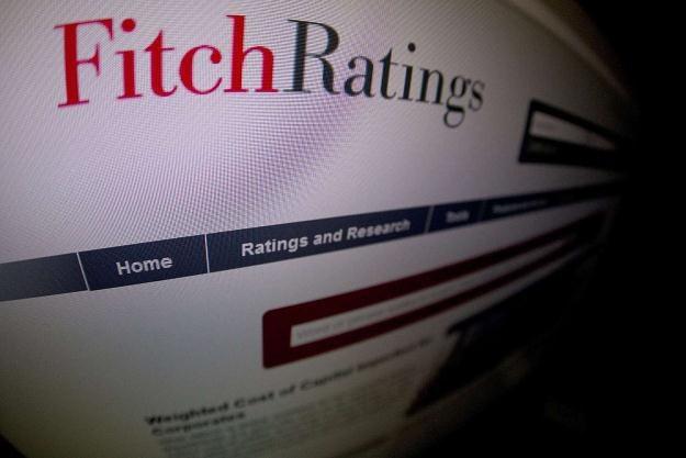 Agencja Fitch jest zaniepokojona polityką finansową USA /AFP