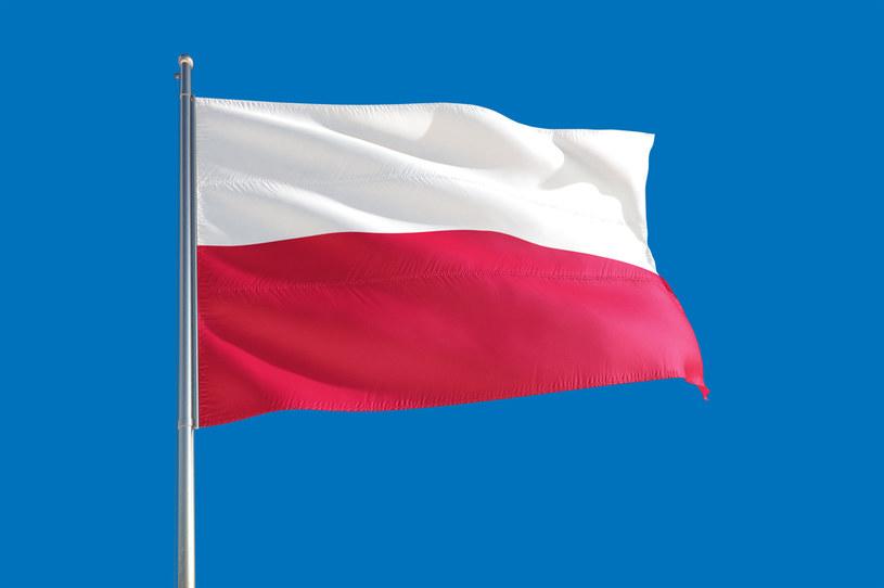 Agencja ratingowa Fitch podwyższyła prognozę wzrostu PKB Polski /123RF/PICSEL