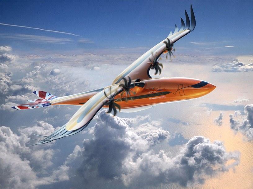 Airbus Bird of Prey /materiały prasowe