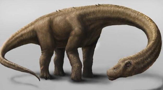 ak możemy sobie wyobrazić Dreadnoughtusa schrani Źródło: Drexel/NSF; Image: Jennifer Hall. /materiały prasowe