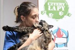 Akcja honorowego krwiodawstwa psów i kotów