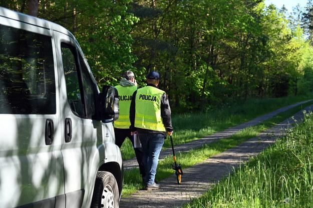 Akcja policji w lesie w miejscowości Sulikowo. W niedzielę około godziny 16 w lesie policjanci natrafili na ciało kobiety / Marcin Bielecki    /PAP