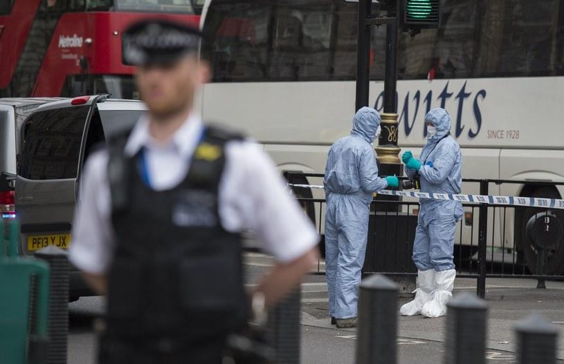Akcja policji w Londynie /WILL OLIVER  /PAP/EPA