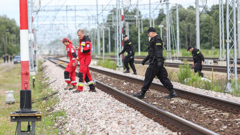Akcja poszukiwawcza 5-letniego Dawida /Fot Tomasz Jastrzebowski /Reporter